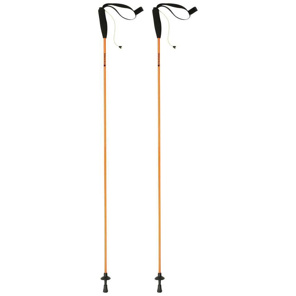 bastoni-ferrino-eiger-135-2-units