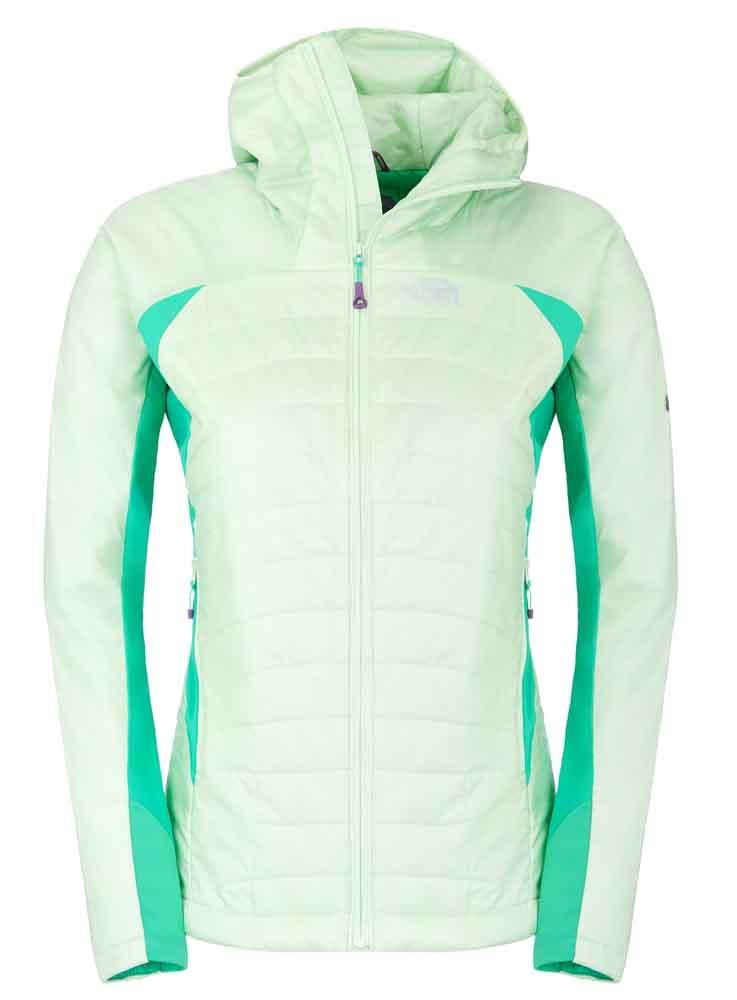 THE NORTH FACE Dnp Hoodie Summit Series