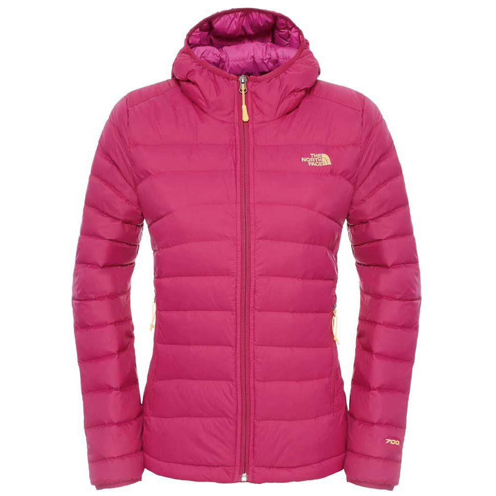 The north face Mistassini Hoodie