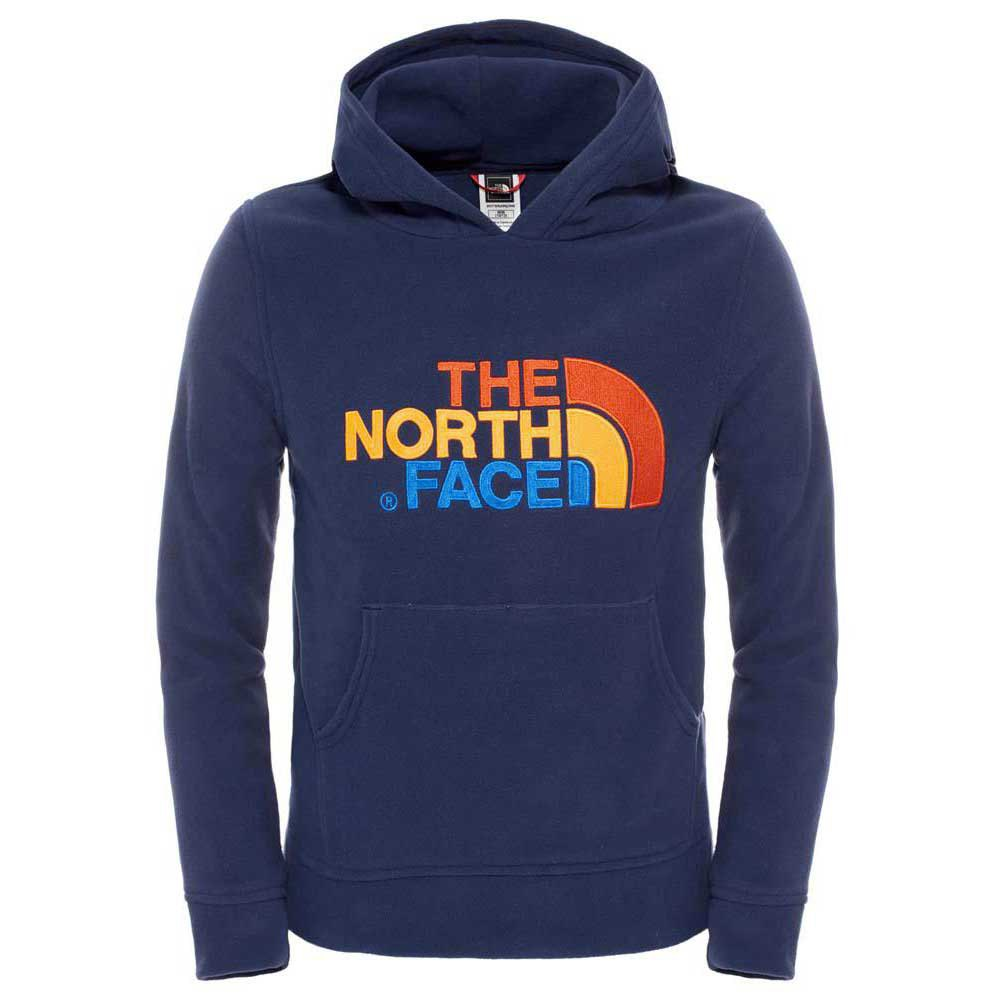 The north face 100 Drew Peak Pullover Hoodie Youth