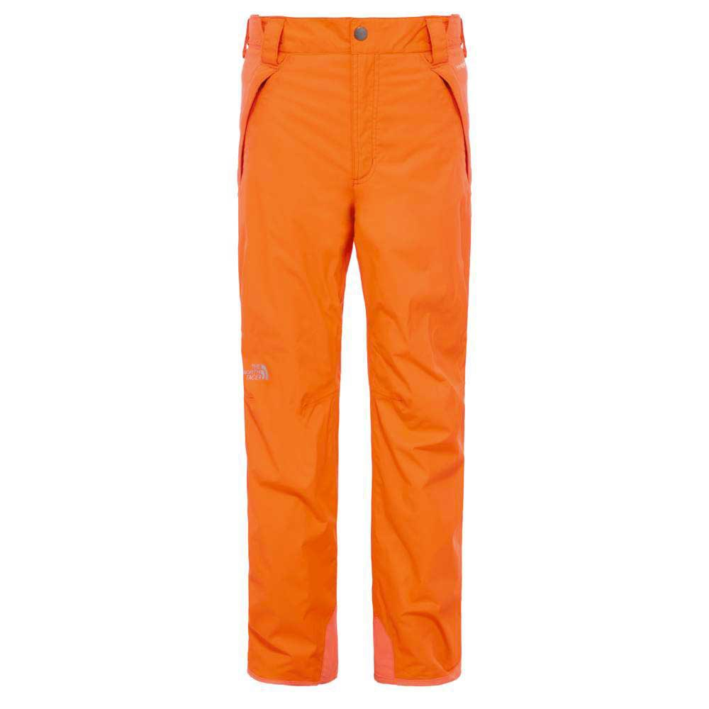 The north face Freedom Insulated Boys