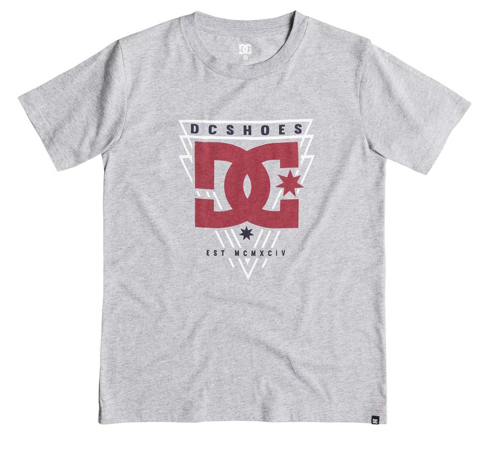 Dc shoes Master Tee Youth