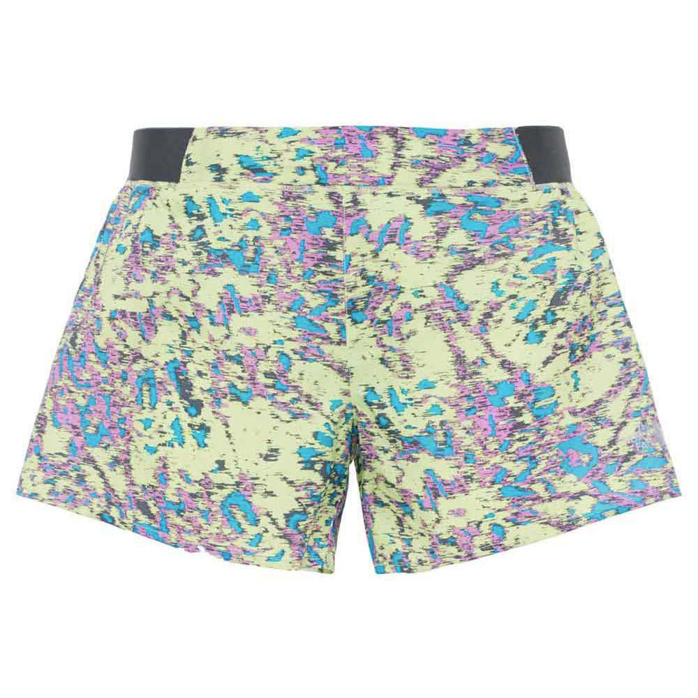 The north face Altertude Short