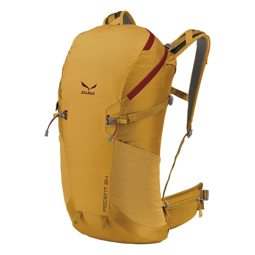 Salewa Ascent 24L
