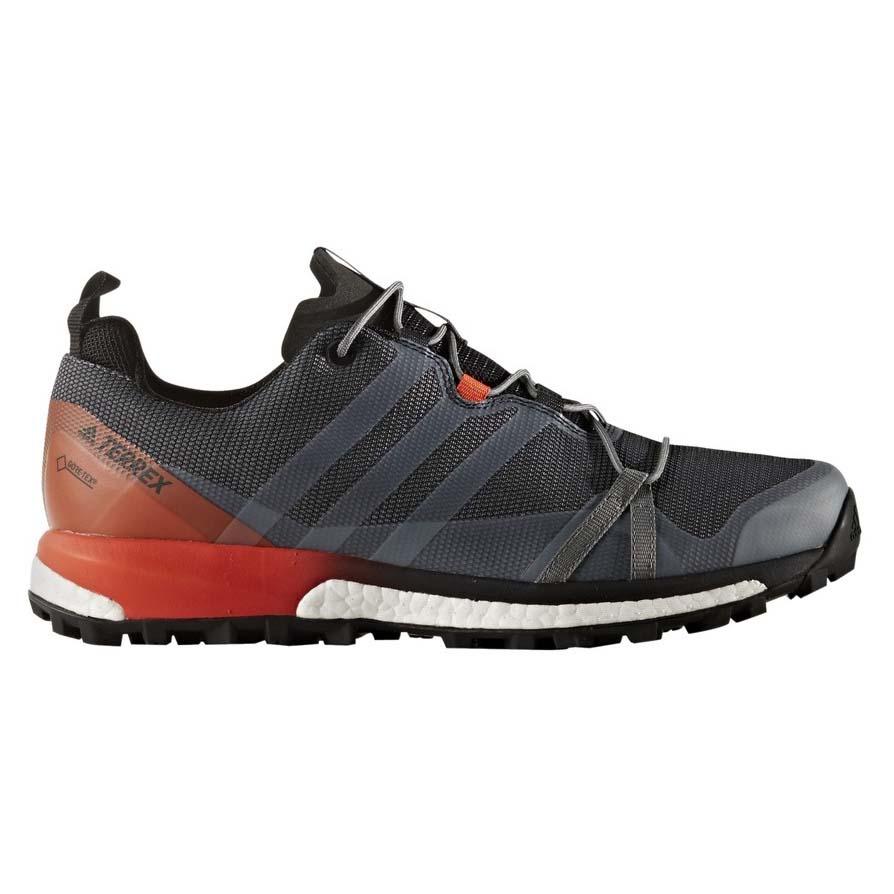 adidas Terrex Agravic Goretex buy and