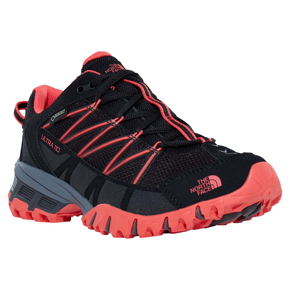 north face 110