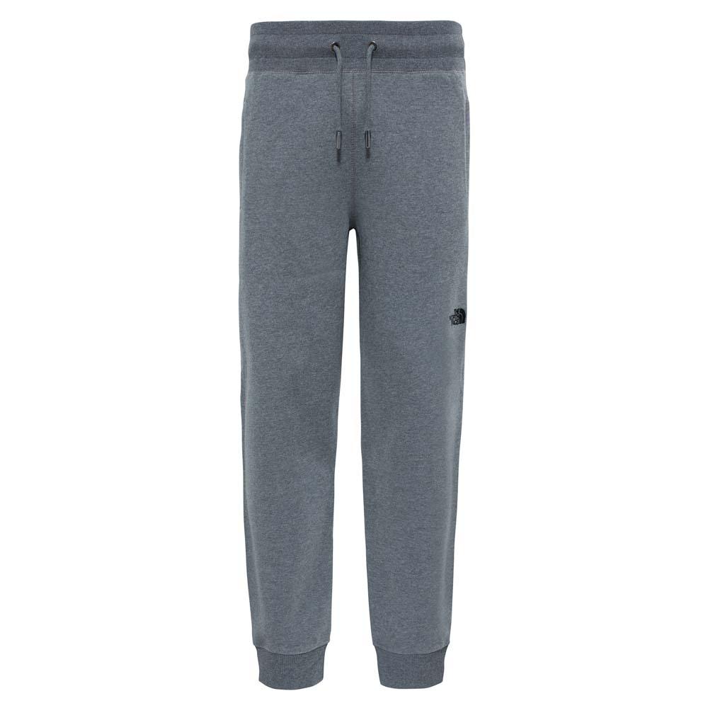 Pantalons The-north-face Nse Pants Regular