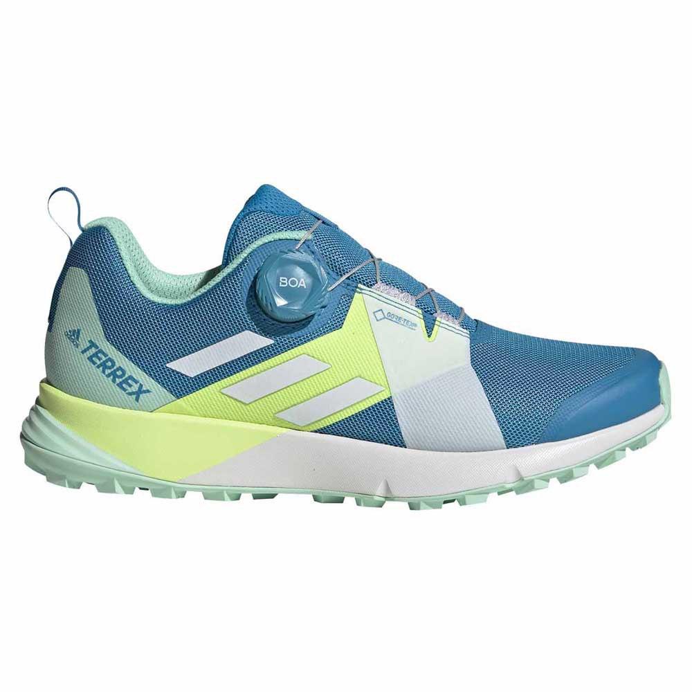 puesto Sala Cartero  adidas Terrex Two Boa Goretex Blue buy and offers on Trekkinn