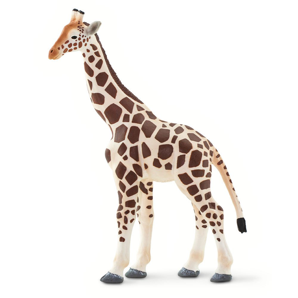 Safari ltd Giraffe