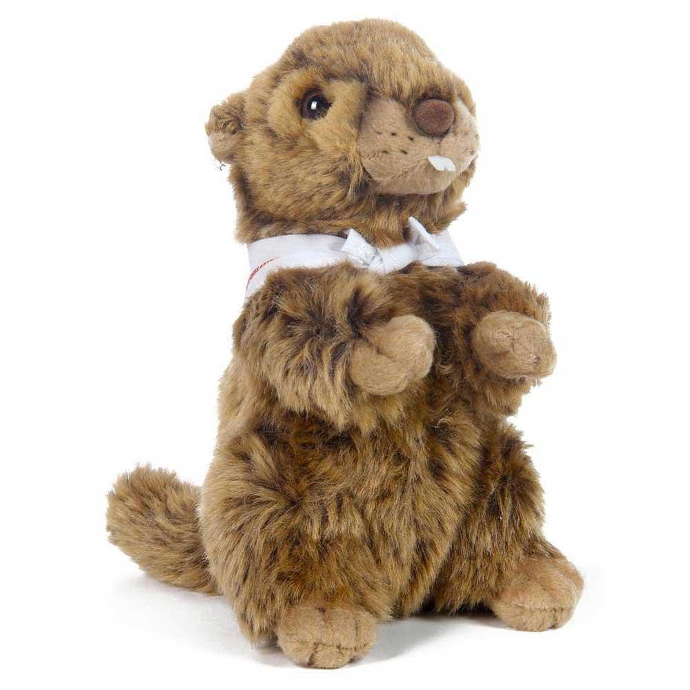 f4a86125ff ... Marmot Cuddling Marmot  Marmot Cuddling Marmot