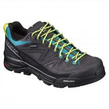 Salomon X Alp Ltr Goretex