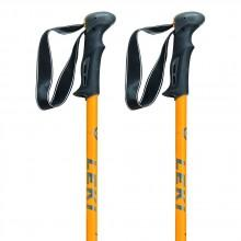 Leki Trail Antishock (2 Units)