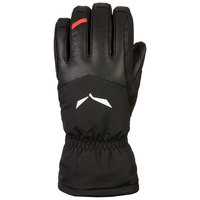 Salewa Ortles Goretex Warm Gloves