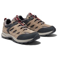 Timberland Sadler Pass Waterproof Low Wide Piel