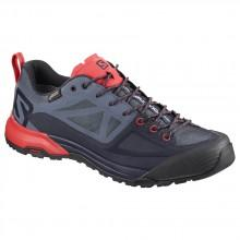 Salomon X Alp Spry Goretex