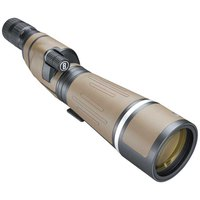 bushnell-forge-20-60x80