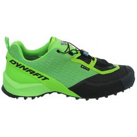 Dynafit Speed Mountain Goretex