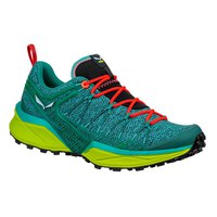 Salewa Dropline