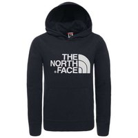 The north face New Peak Hoodie