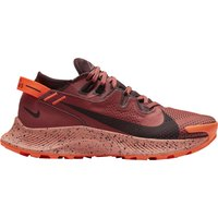 nike-zapatillas-pegasus-trail-2