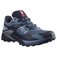 Salomon Wings Sky Goretex