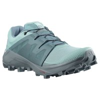 Salomon Wildcross Goretex