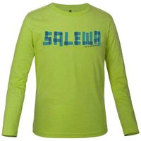 Salewa Faxe Co L/S Tee
